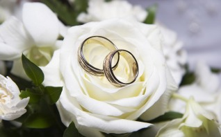 Rings and White Rose