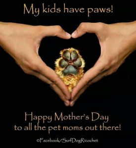 Fur Mother's Day